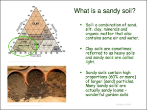 Three types of soils, a diagram of types of soil, and a description of sandy soils