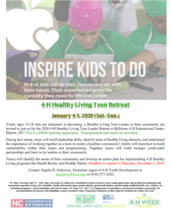 2020 Healthy Living Retreat flyer