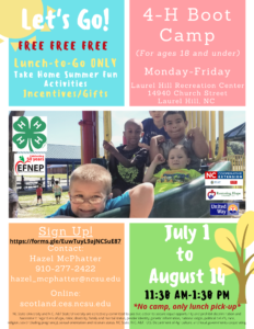 Cover photo for 4-H Summer Boot Camp