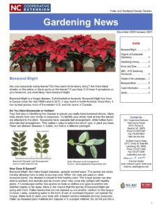 gardening newsletter Dec-Jan 2021